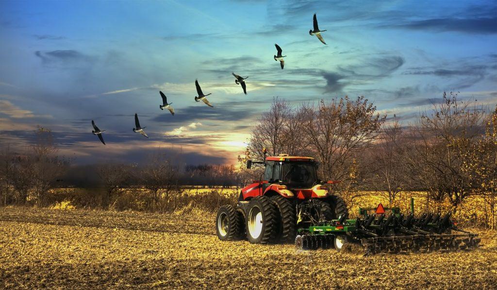 scenery, sunset, tractor