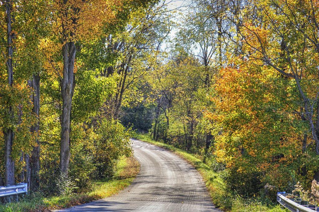 scenery, road, autumn